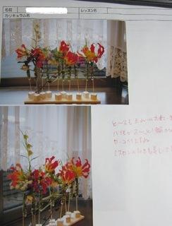 IMG_0665b.jpg