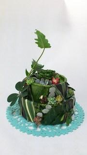 ケーキyk.jpg